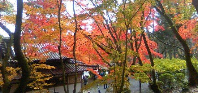平成の京町家セミナーと耐震シンポジウム